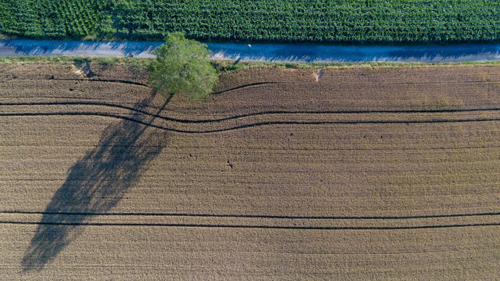 St Nicolas de Macherin Vue de l'arbre de VenonPhotographe de drone Architecture Photographe Grenoble Drone Architecture entreprise Vidéaste Grenoble DJI Phantom 4 pro DJI France Pilote de drone Grenoble Direction général de l'avion civile france Grenoble Rhône Alpes Auvergne