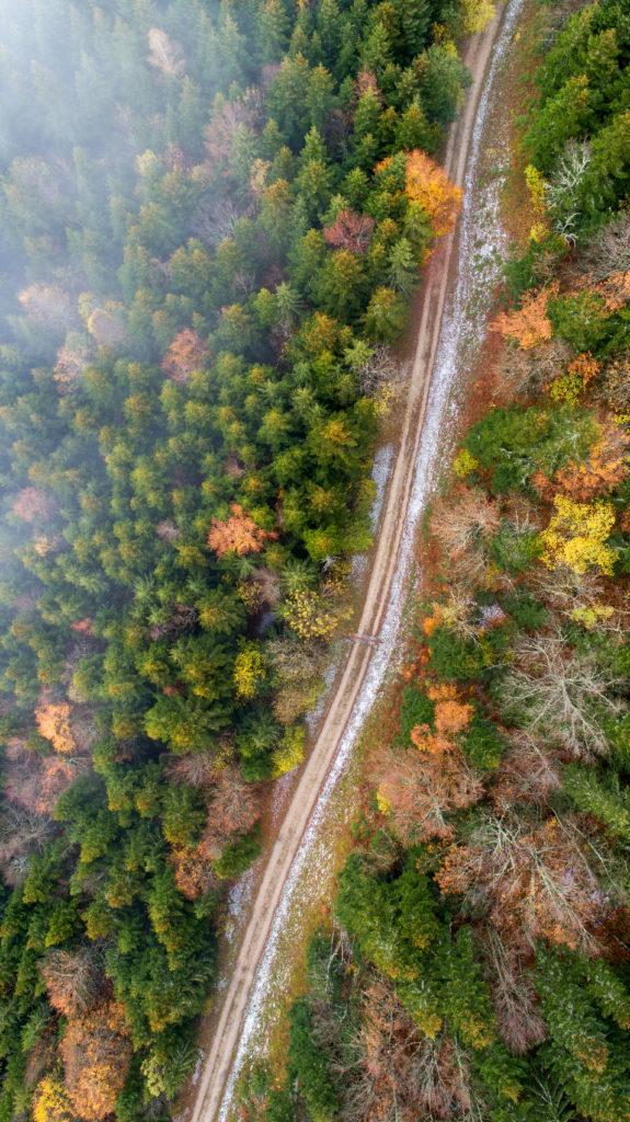 St Nizier le Moucherotte Forêt Isère ONF Office Nationale des Forêt Chemin Nature Wildlife Drone France Escadrone pilote de drone Baptiste gamby photographe Grenoble