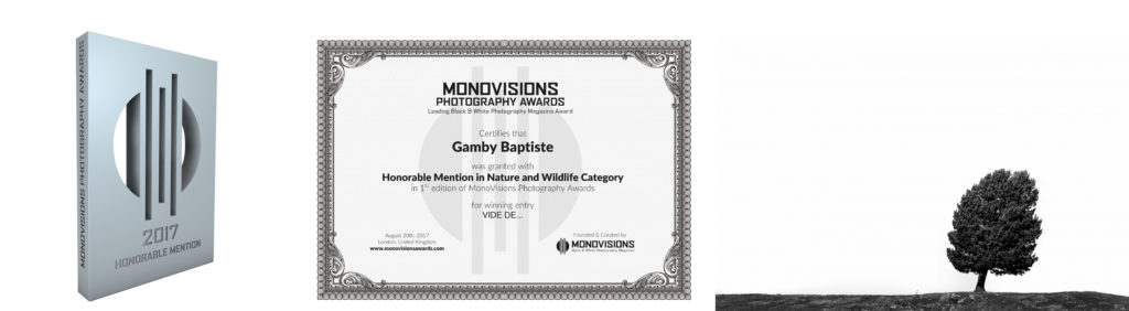 monovisionsawards contest photographie international Baptiste Gamby Architecture d'art Nature wildlife National Géographique